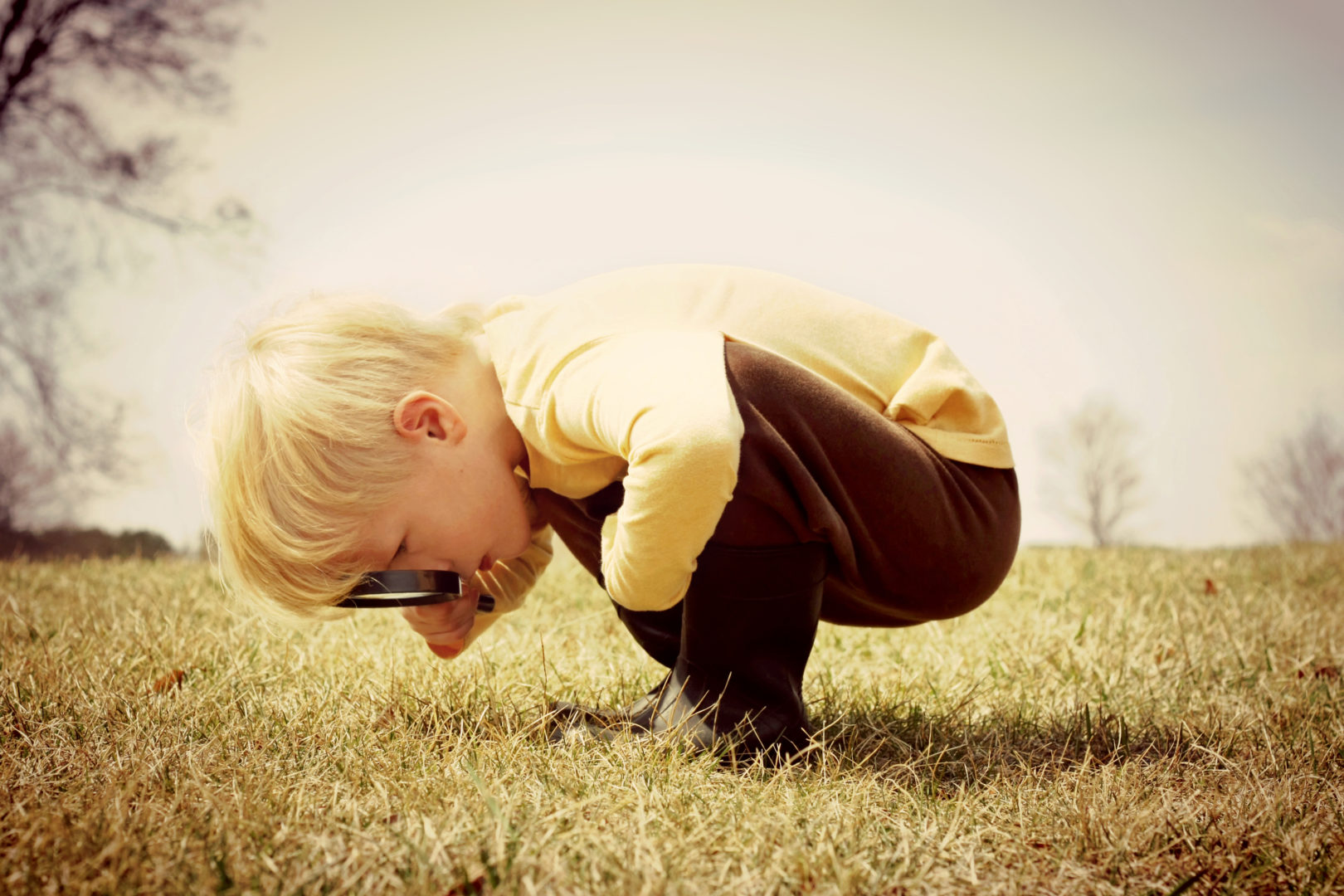 boy looking in grass