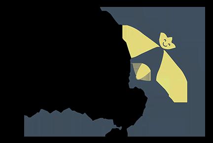 simplify firefly
