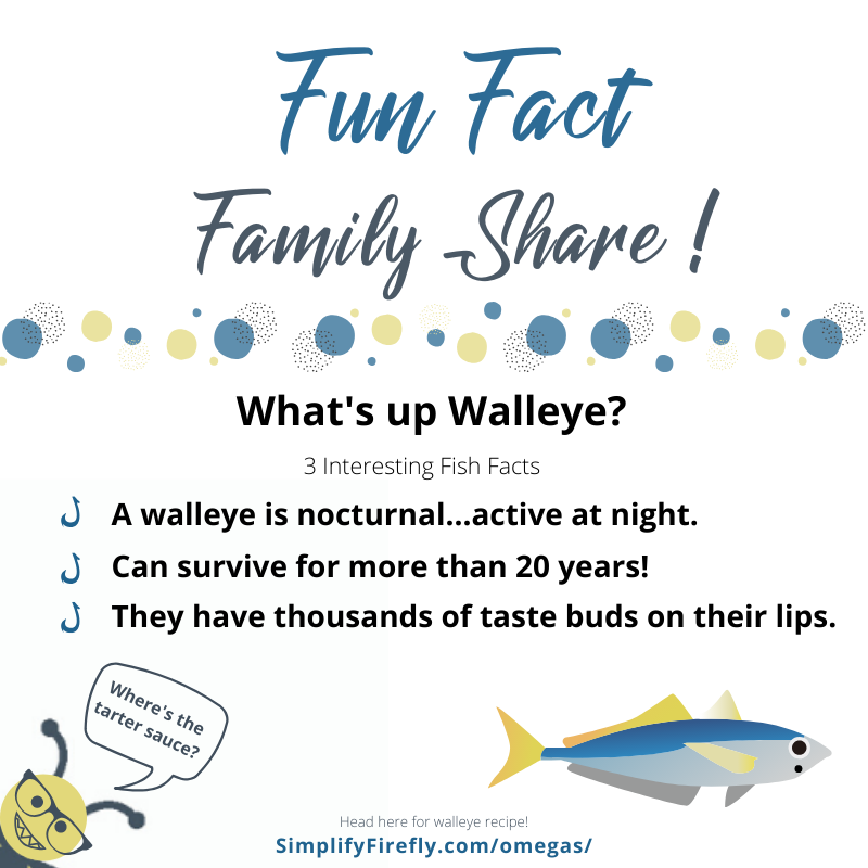 Walleye fun fact
