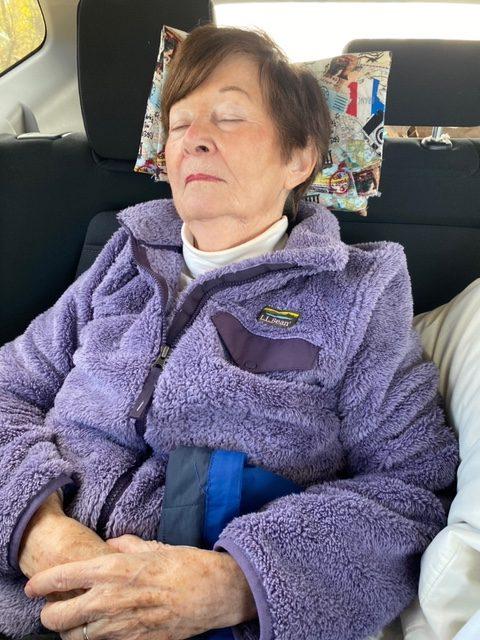 LapLander while sleeping in car