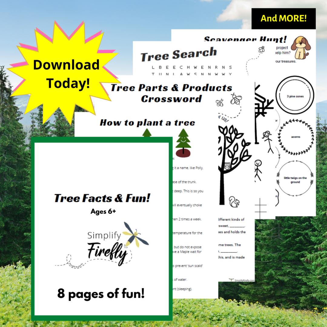 Tree Activity Worksheet